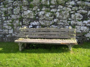 Lichen encrusted bench