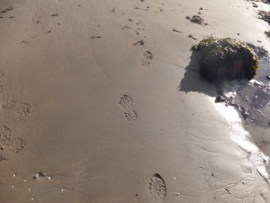 my footprints in the sand